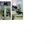 thumb_מיקרוסקופ ביולוגי (3)